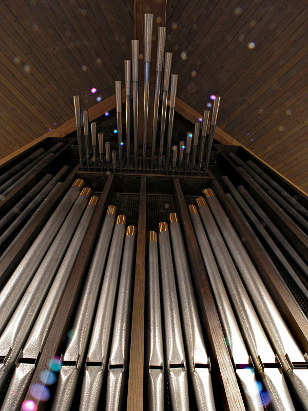 St Paul Lutheran Pipes behind choir