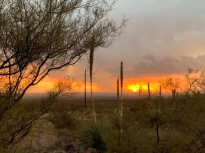 Las Cruces Sunset - Kerry Caldwell