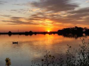 Roswell NM sunrise! - Sue Hanson McBride
