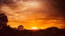 Wayne Mikos - Golden sunset, Sandia Park